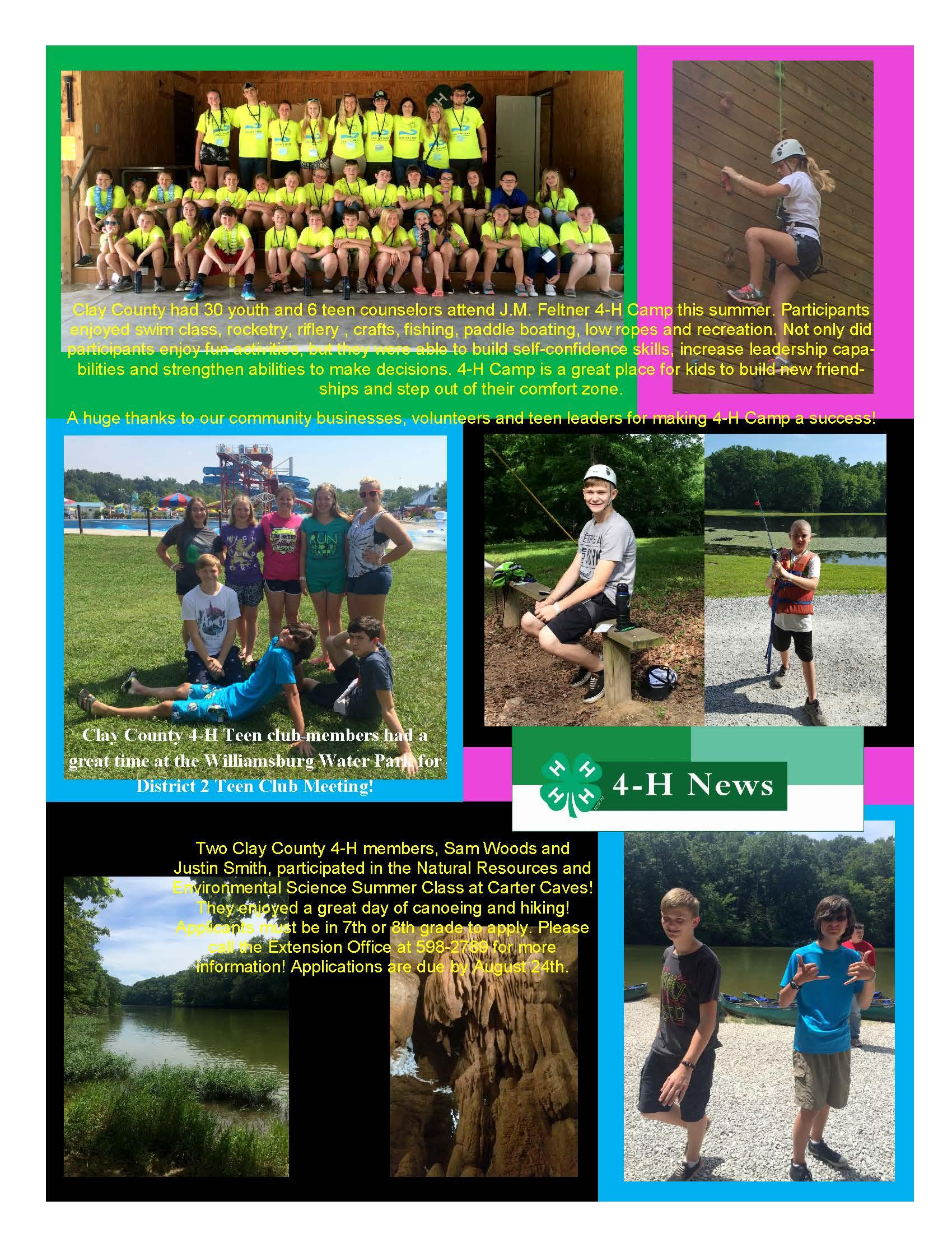 4-H Collage of Pictures