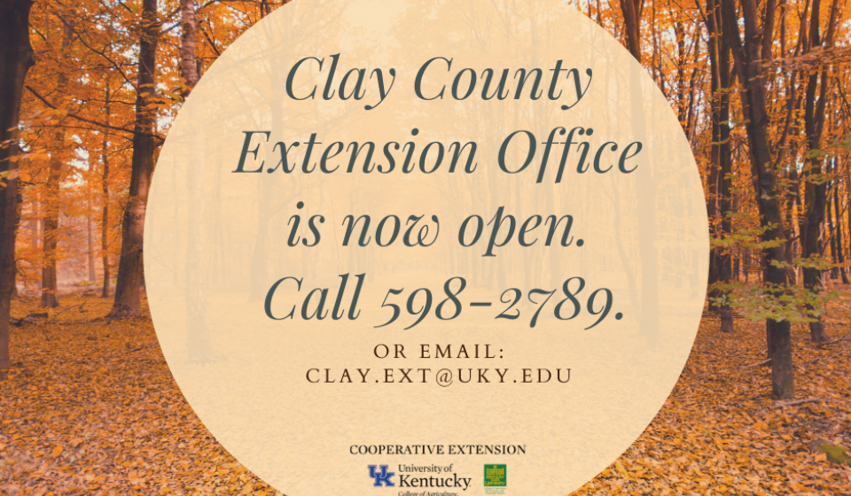 We are open by appointments only. Call 598-2789 or email clay.ext@uky.edu